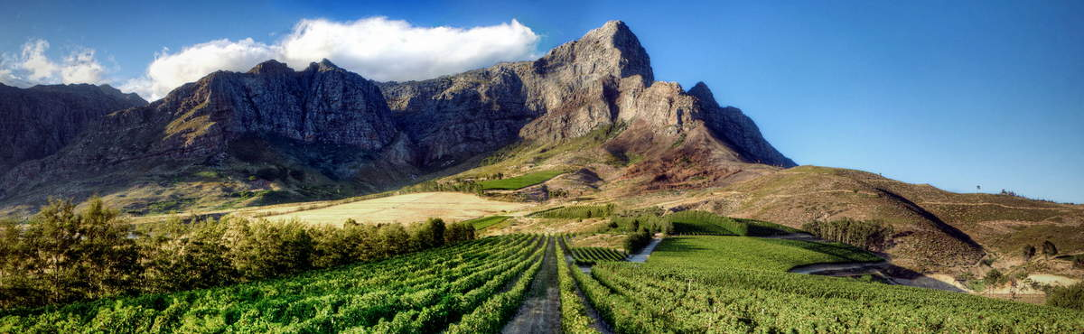 Garden Route with Cape Winelands Tour