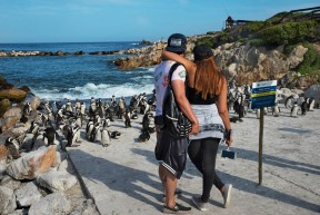 South Africa Honeymoon Tour