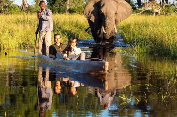 Southern Africa Safari Tour