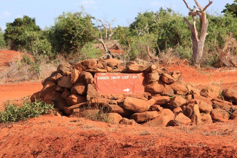 Kanderi Swamps (Tsavo East)