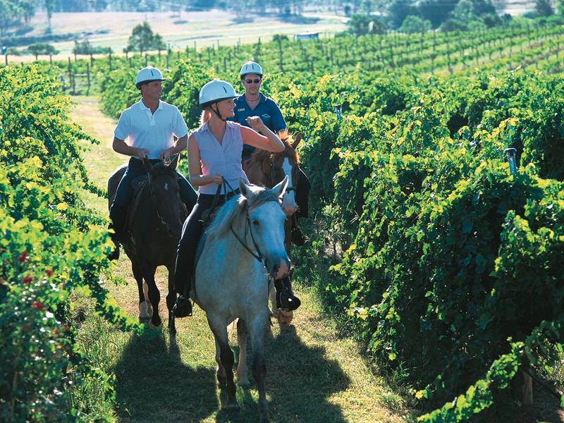 Horse Back wine tasting
