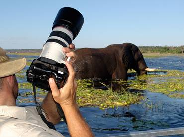 Photography tour at Chobe