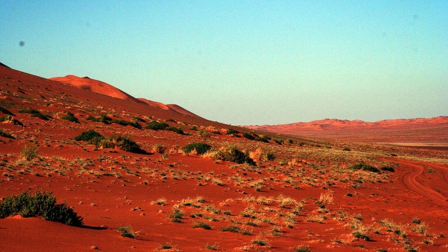 Kalahari Red Dunes