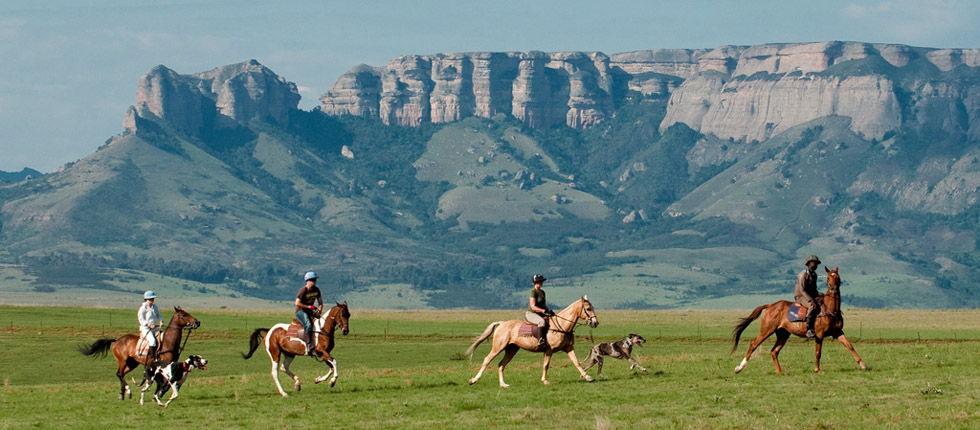 Horse trail at the Drakensberg