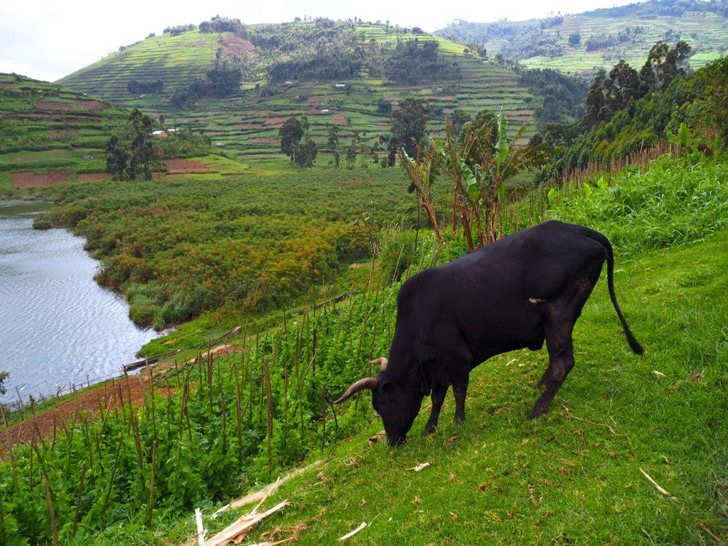 Sanga Village