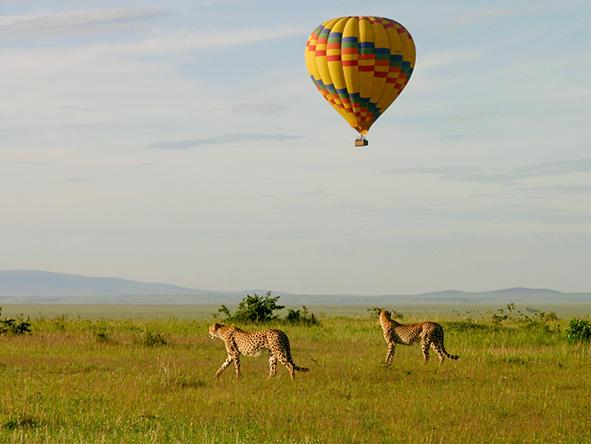 Balloon Safari at Masai Mara