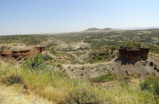 Visit the Olduvai Gorge