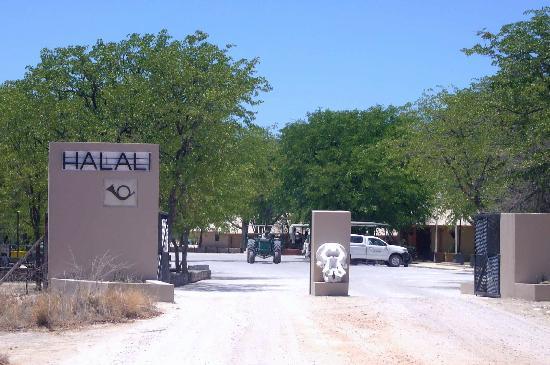 Halali Stone Memorial