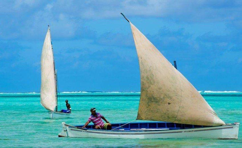Sail Boat Trips