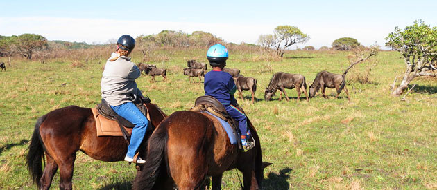 Horse Safari at Hluhluwe