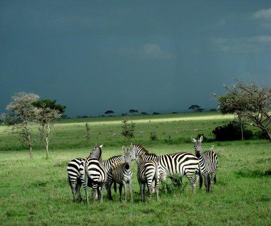 Maasai Kopjes