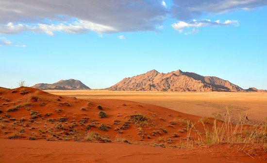 Elim dunes