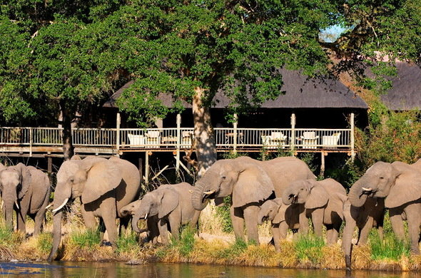 03 Days Sabi Sabi Bush Lodge Safari