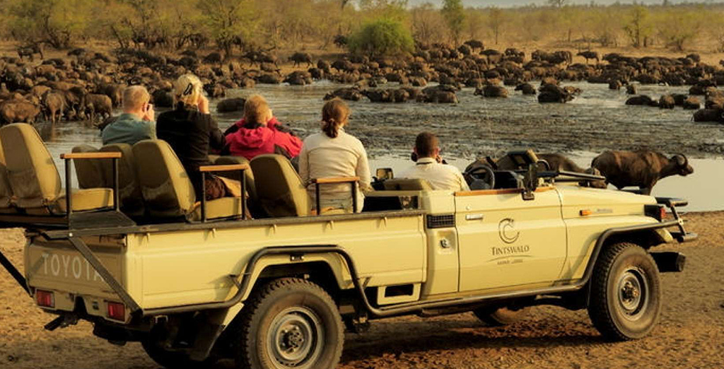 03 Days Tintswalo Lodge Safari