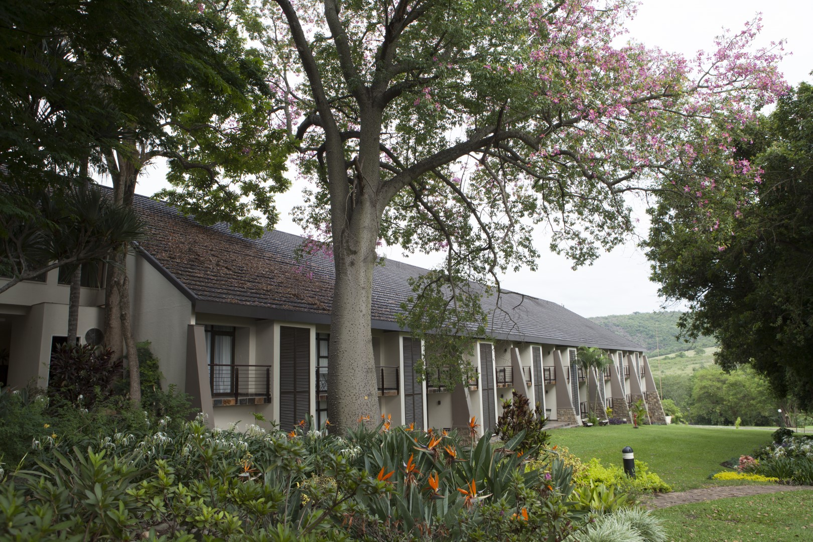 03 Days Sabie River Sun Hotel Safari
