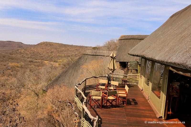 03 Days Buffalo Ridge Safari Lodge Safari